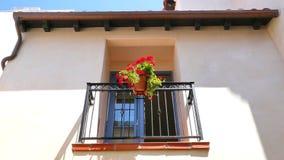 Façade blanche de plâtre avec le balcon de fenêtre et fleurs rouges dans le pot Photographie stock
