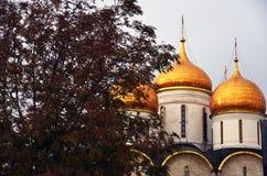 Façade d'église de Dormition de Moscou Kremlin Site de patrimoine mondial de l'UNESCO photographie stock libre de droits