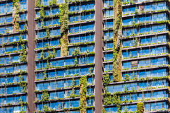 Façade d'usine - jardin vertical photo stock