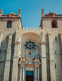 Façade de cathédrale de Porto image libre de droits