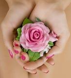 Façonnez le tir de studio d'un collier rose floral (bijoux faits de Photographie stock