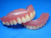 fałszywe zęby Obraz Stock