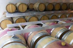 Fabbrica contemporanea del vino Fotografia Stock Libera da Diritti