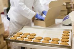 Fabbrica dei biscotti immagine stock libera da diritti