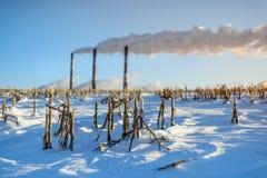 Fabbrica dei tubi su un fondo del paesaggio del campo di inverno Fotografia Stock