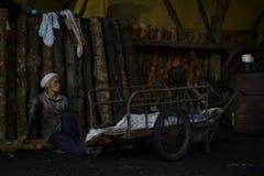 Fabbrica del carbone Fotografia Stock