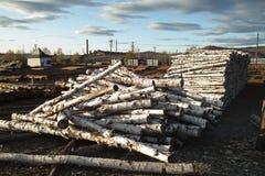 Fabbrica del legname Immagine Stock