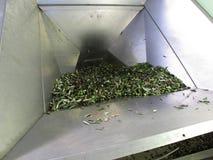 Fabbrica dell'olio di Olivie in Italia fotografie stock libere da diritti