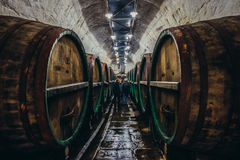 Fabbrica di birra in Plzen Fotografia Stock Libera da Diritti