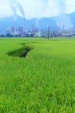 Fabbrica in mezzo ad un terreno coltivabile verde un giorno nuvoloso immagine stock libera da diritti
