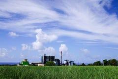 Fabbrica sotto cielo blu a Port Louis, Mauritius Immagine Stock