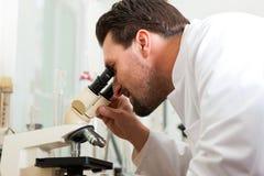 Fabbricante di birra della birra nell'esame del laboratorio per prodotti alimentari Immagine Stock