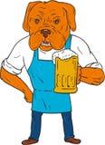 Fabbricante di birra Mug Mascot Cartoon del cane del Bordeaux Fotografia Stock