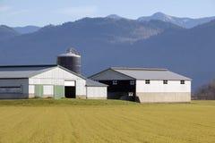 Fabbricati agricoli pratici in valle Immagini Stock