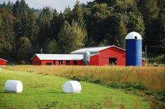 Fabbricati agricoli rossi e blu Immagini Stock Libere da Diritti