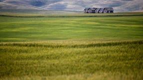 Fabbricato agricolo abbandonato Fotografia Stock
