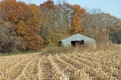 Fabbricato agricolo nel cereale e nei colori di caduta Fotografie Stock