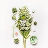 Fabbricazione cosmetica di erbe della maschera Foglie e succulenti tropicali con i prodotti e gli accessori cosmetici fotografia stock