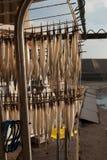 Fabbricazione dei halfbeaks secchi Fotografia Stock Libera da Diritti