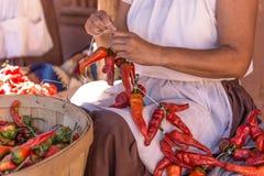Fabbricazione dei riestras del peperoncino rosso Fotografie Stock Libere da Diritti