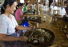 Fabbricazione dei sigari birmani Immagini Stock