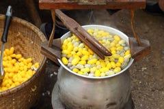 Fabbricazione del baco da seta del bozzolo Fotografia Stock