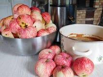Fabbricazione del succo di mele Immagini Stock Libere da Diritti