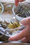 Fabbricazione dell'insieme di tè di infusione del Camomilla-dragoncello Fotografia Stock Libera da Diritti