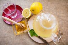 Fabbricazione dell'insieme di tè di infusione del Camomilla-dragoncello Immagini Stock Libere da Diritti