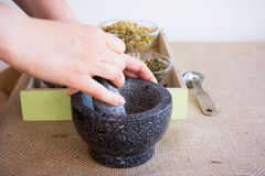 Fabbricazione dell'insieme di tè di infusione del Camomilla-dragoncello Immagini Stock