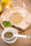 Fabbricazione dell'insieme di tè di infusione del Camomilla-dragoncello Immagine Stock