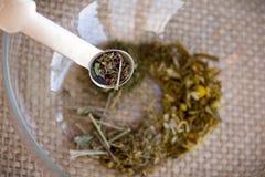 Fabbricazione dell'insieme di tè di infusione del Camomilla-dragoncello Fotografie Stock Libere da Diritti