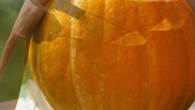 Fabbricazione della zucca di Halloween video d archivio