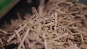 Fabbricazione di scatole di cartone stock footage