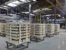 Fabbricazione di tazze in una fabbrica della porcellana Fotografia Stock Libera da Diritti