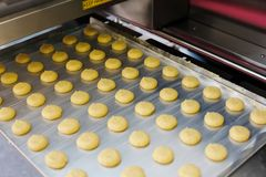 Fabbricazione industriale dei biscotti del biscotto Fotografia Stock Libera da Diritti