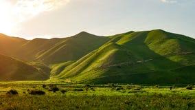 Fabelachtige mening van de bergen, verbazende aard, de zomer in de bergen stock fotografie