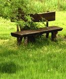 Fabelhafte Holzbank Stockfoto