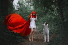 Fabelhaftes Mädchen mit dem dunklen Haar im kurzen hellen weißen Kleid umfasst ihren Kopf mit Haube des langen hellen roten flieg stockbilder
