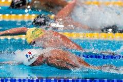 Fabien Gilot ( France) Stock Photos