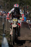 Fabio Mossini Royalty Free Stock Photo