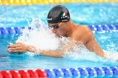 Fabio Scozzoli. In action LEN Budapest 2010 Swimming Championships Stock Images