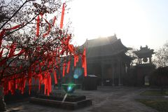Faborek błogosławieństwo na drzewie przed świątynią obraz royalty free