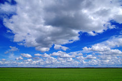 Faboulos natural cloudly blue sky and green field Royalty Free Stock Images