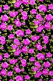 Fabric background, Fragment of colorful retro tapestry textile p Royalty Free Stock Photos