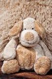 Fabric Dog, Stuffed Animal, Cute Stock Photography
