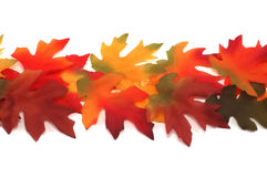 Fabric fall colored maple and oak leafs. Individual fabric maple and oak bright colored leafs positioned as a border on white Royalty Free Stock Images