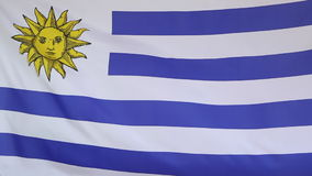 Fabric flag of Uruguay in slow motion. Fabric flag of Uruguay, slow motion in the wind stock video