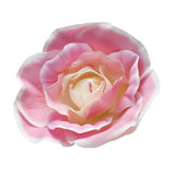 Fabric flower. Artificial flower isolated on a white background. A soft light over fabric texture in pink color. Clipping path Stock Images
