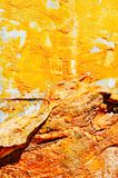 Fabric and Golden Rust Royalty Free Stock Images
